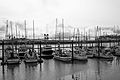 Port of Newport, Oregon-3.jpg