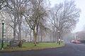 Portland State University-3.jpg