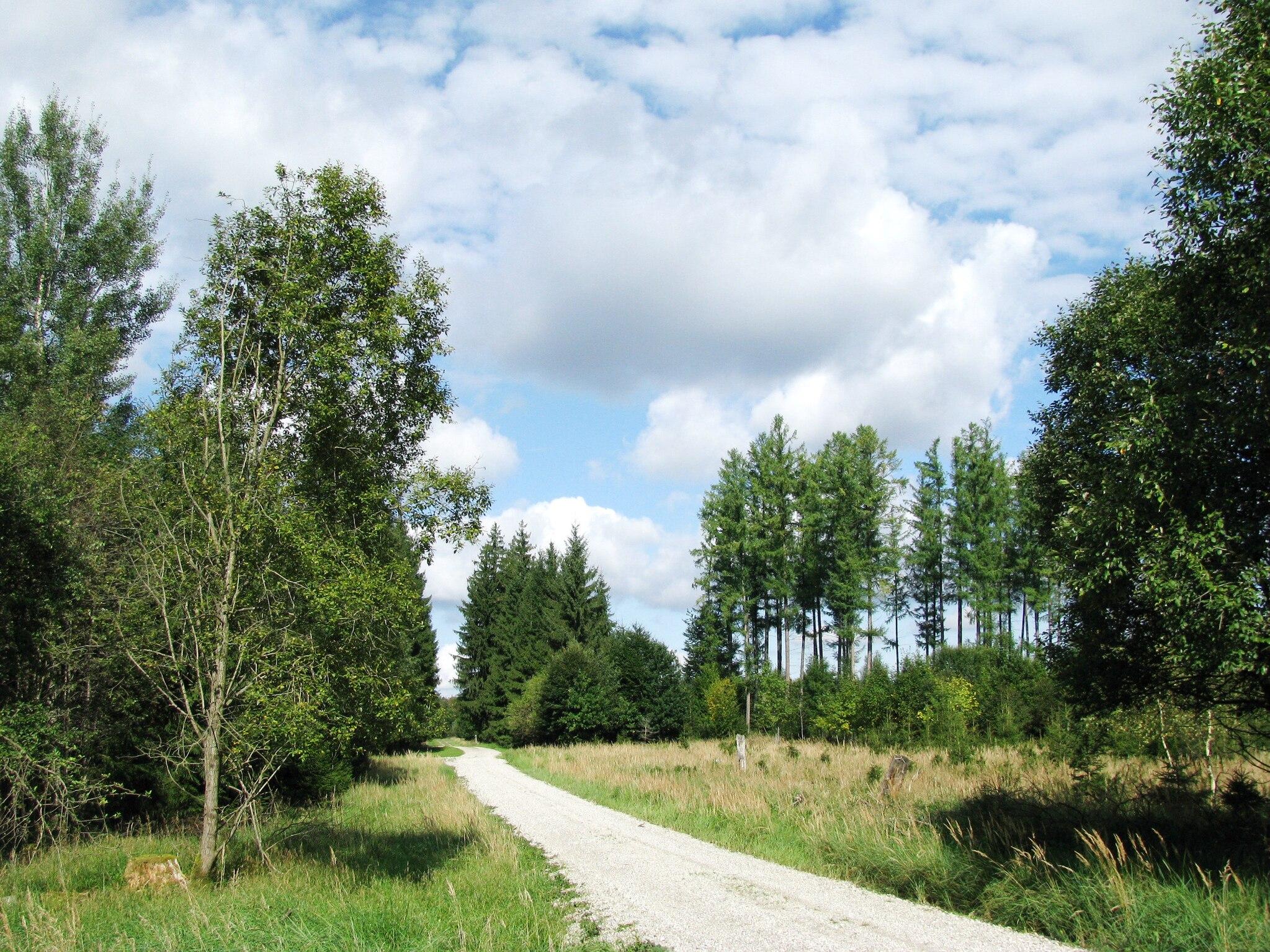 Hakenkreuze inverness