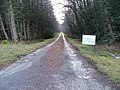 Private Road to Leanachan - geograph.org.uk - 342338.jpg