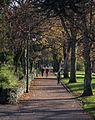 Putting up the Crimbo lights , Matlock Park (6355514221).jpg