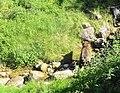 Questi territori selvaggi del Trentino sono l'habitat ideale per gli orsi - panoramio.jpg