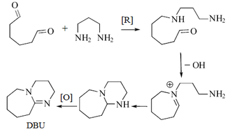 1,8-Diazabicyclo(5.4.0)undec-7-ene - Hypothetical pathway of DBU production in sponges