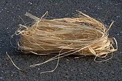 Raffia fibers.jpg