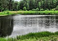 Ramensky District, Moscow Oblast, Russia - panoramio - Andris Malygin (14).jpg