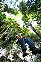 Rappelling Belize Rainforest.jpg
