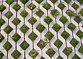 Rasenpflasterstein 1.jpg