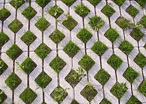 Permeable paving - Grass pavement