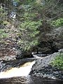 Raymondskill Falls - Pennsylvania (5678029926).jpg