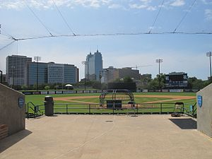 Reckling Park - Rice Reckling's Field spectacular Center field view of the Houston Medical Center