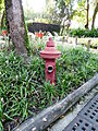 Red Fire Hydrant in Taipei Zoo 20131002.jpg
