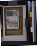 Renaissance candelabra in the border; in the lower margin, verses in Dutch (NYPL b12455533-426094).tif