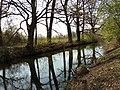 Rheinniederungskanal (Areko), bei Iffezheim.jpg