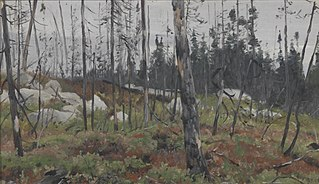 Gemengd bos in Canada