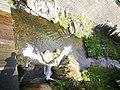 River Malá Úpa 03.jpg