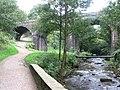 River Sett railway viaduct - geograph.org.uk - 979710.jpg
