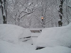 The park side under record snowfall in the Bli...