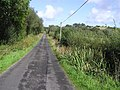 Road at Carrownoona - geograph.org.uk - 1482555.jpg