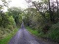 Road at Monesk - geograph.org.uk - 1504448.jpg