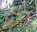 Rocher a Eastman - panoramio.jpg