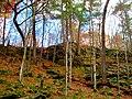 Rock Outcroping - panoramio (1).jpg