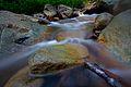 Rock flow (8184722530).jpg