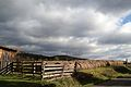 Rolls of straw in the North Fork Valley Rural Historic District.jpg