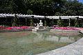 Roseraie du parc de la tête d'or.jpg