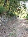 Rota do Castro do Banho XV (5603502217).jpg