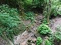 Ruisseau de Loverchy @ Parc du Val Vert @ Seynod (50884879407).jpg