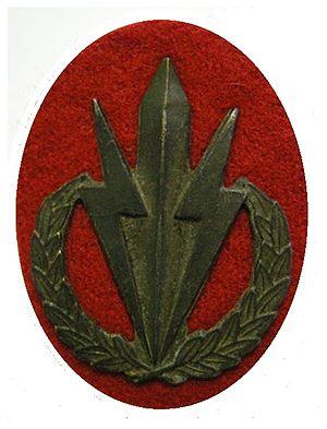 62 Mechanised Battalion Group - 62 Mech emblem
