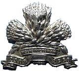 SANDF 2SSB beret badge