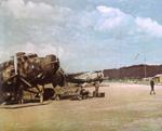 SM.81 pipistrello.png