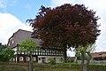 Sachsen, Obercunnersdorf, Naturdenkmal Rotbuche an der Hauptstrasse 84 NIK 5596.JPG