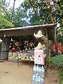 Sacred City of Pollonnaruwa, Polonnaruwa, Sri Lanka - panoramio (1).jpg
