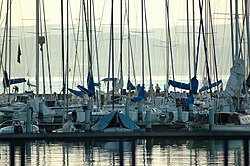 Sailingships in the Port of Balatonföldvár