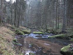 Sarleinsbach Kleine Mühl 20121125.JPG