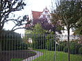 Schloss Ratibor Roth 02.jpg