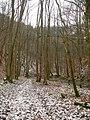 Schmerachklinge 050108.jpg