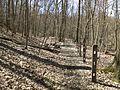 Self-guided nature trail at Latodami Nature Center - 8.jpeg