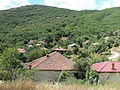 Selo Izista.jpg