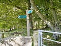 Signpost at Roughmoss, Brechin - geograph.org.uk - 647430.jpg