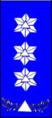 Sivilforsvaret-Distinksjon-Sivilforsvarsinspektør.png
