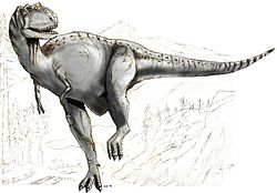 Sketch albertosaurus.jpg
