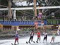Ski Show at Sea World.jpg