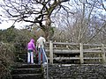 Sloughan Glen - geograph.org.uk - 1176752.jpg