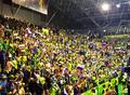 Slovenian fans.png