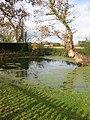Small pond, Madresfield - geograph.org.uk - 1565667.jpg