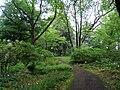 Späth-Arboretum - May 2010 - IMG 8810.JPG