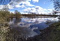 Spring day on the river Biarezina in April.jpg